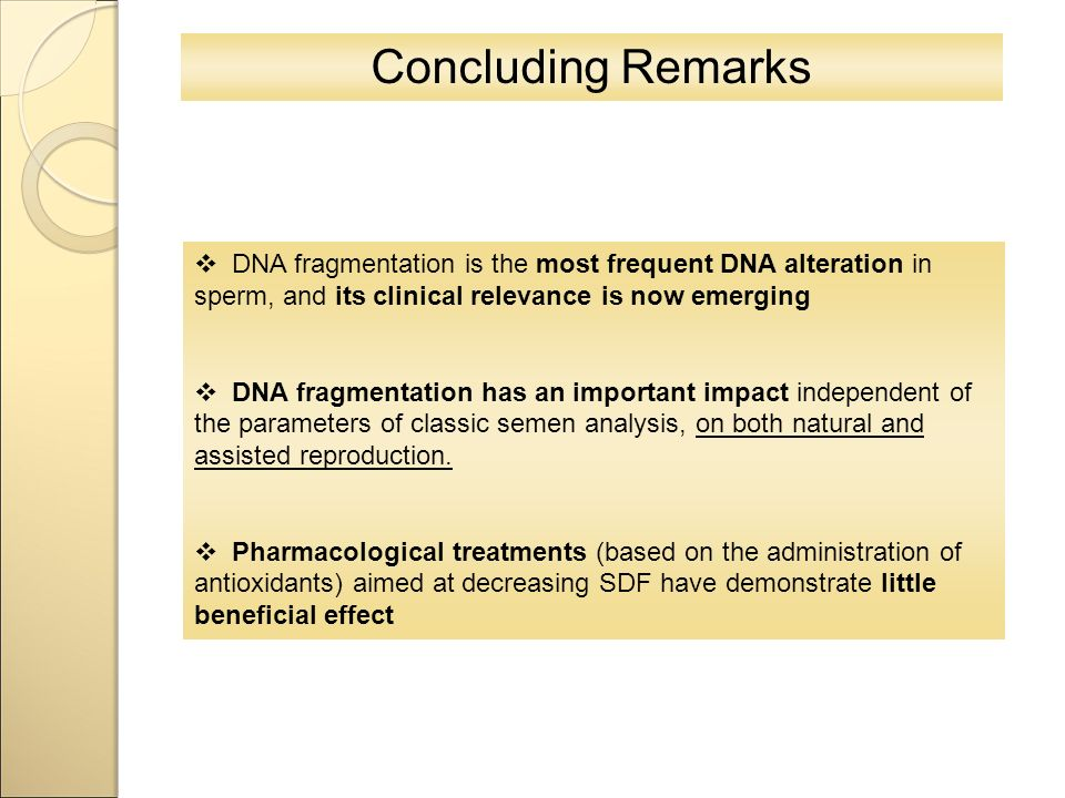 Concluding Remarks  DNA fragmentation is the most frequent DNA alteration in sperm, and its clinical relevance is now emerging  DNA fragmentation ha