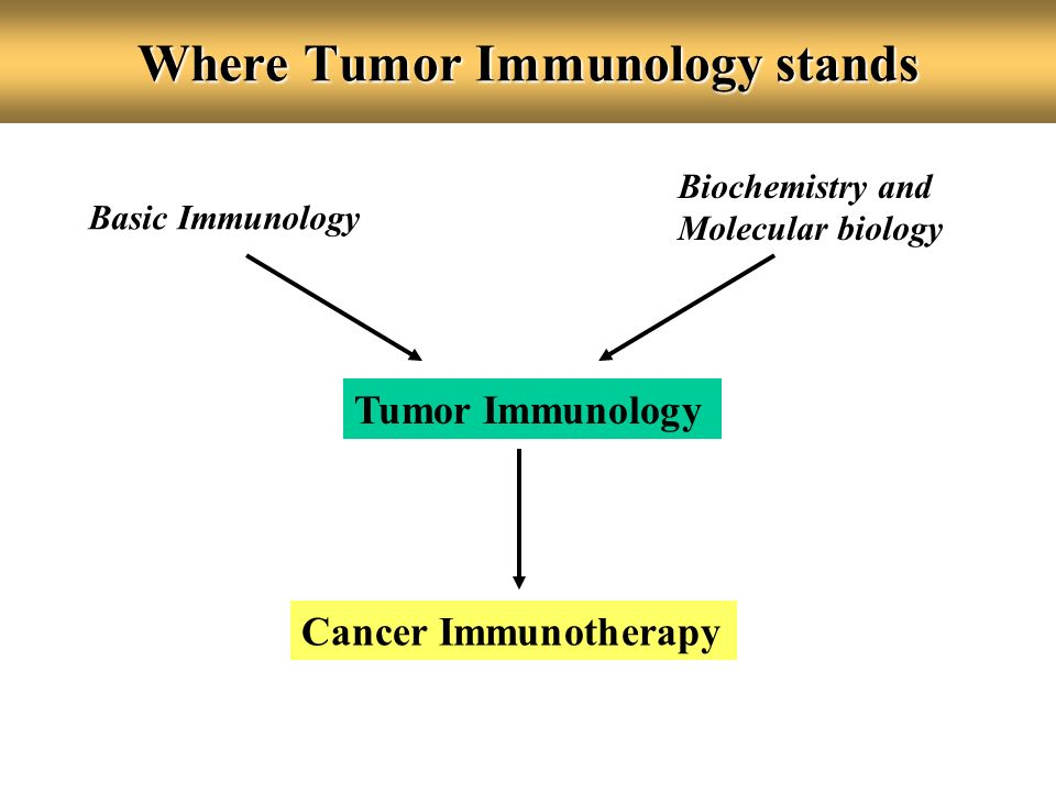 Where Tumor Immunology stands Basic Immunology Biochemistry and Molecular biology Tumor Immunology Cancer Immunotherapy