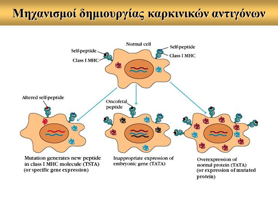 Μηχανισμοί δημιουργίας καρκινικών αντιγόνων (or specific gene expression) (or expression of mutated protein)