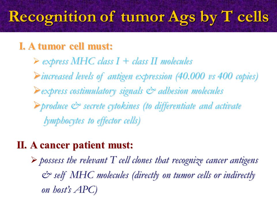 I. A tumor cell must:  express MHC class I + class II molecules  increased levels of antigen expression (40.000 vs 400 copies)  express costimulato