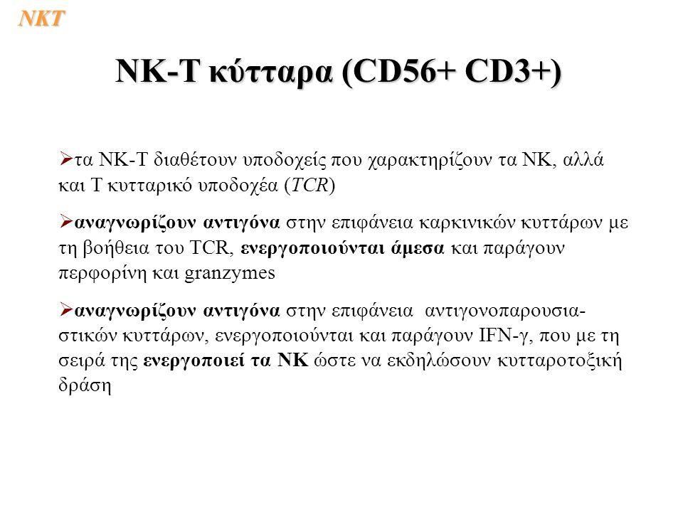   τα ΝΚ-T διαθέτουν υποδοχείς που χαρακτηρίζουν τα ΝΚ, αλλά και Τ κυτταρικό υποδοχέα (TCR)   αναγνωρίζουν αντιγόνα στην επιφάνεια καρκινικών κυττά
