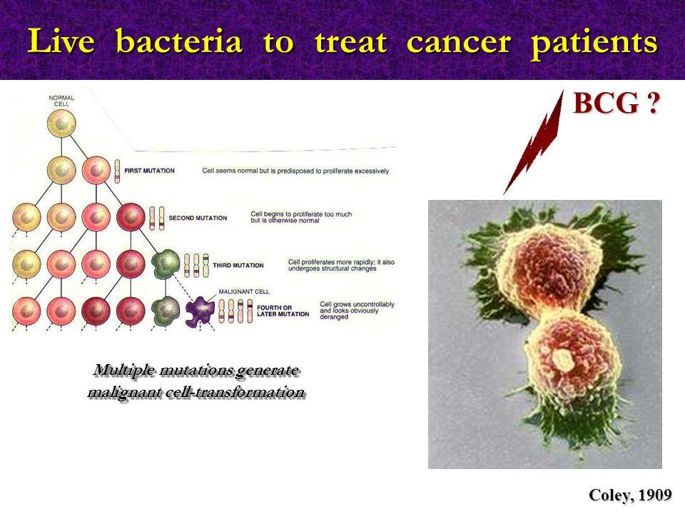   τα ΝΚ-T διαθέτουν υποδοχείς που χαρακτηρίζουν τα ΝΚ, αλλά και Τ κυτταρικό υποδοχέα (TCR)   αναγνωρίζουν αντιγόνα στην επιφάνεια καρκινικών κυττάρων με τη βοήθεια του TCR, ενεργοποιούνται άμεσα και παράγουν περφορίνη και granzymes   αναγνωρίζουν αντιγόνα στην επιφάνεια αντιγονοπαρουσια- στικών κυττάρων, ενεργοποιούνται και παράγουν IFN-γ, που με τη σειρά της ενεργοποιεί τα ΝΚ ώστε να εκδηλώσουν κυτταροτοξική δράση NK-T κύτταρα (CD56+ CD3+) NKΤ