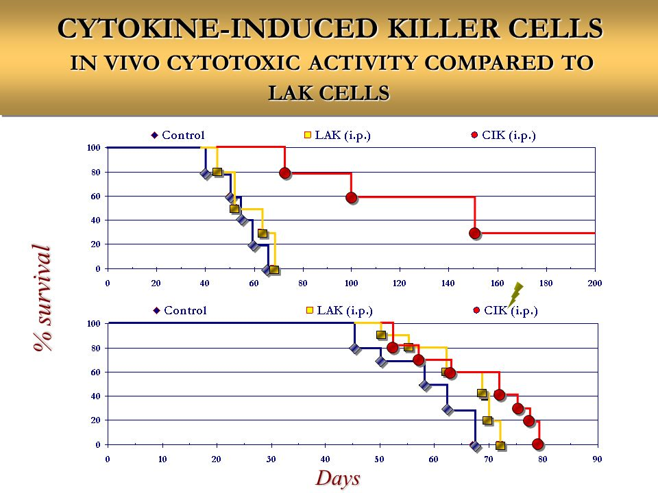 CYTOKINE-INDUCED KILLER CELLS IN VIVO CYTOTOXIC ACTIVITY COMPARED TO LAK CELLS % survival Days