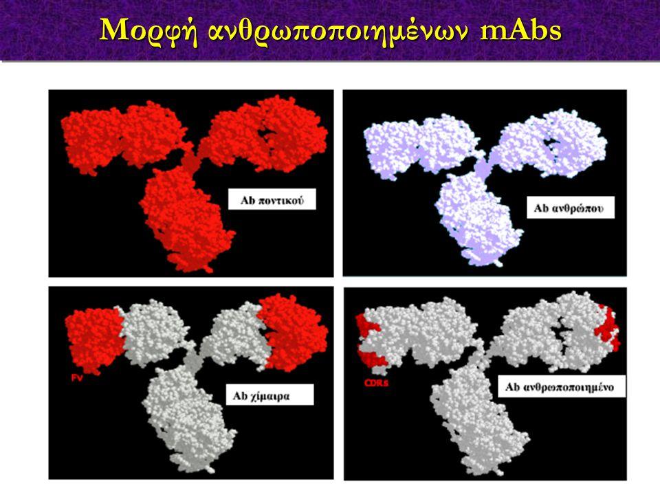 Μορφή ανθρωποποιημένων mAbs