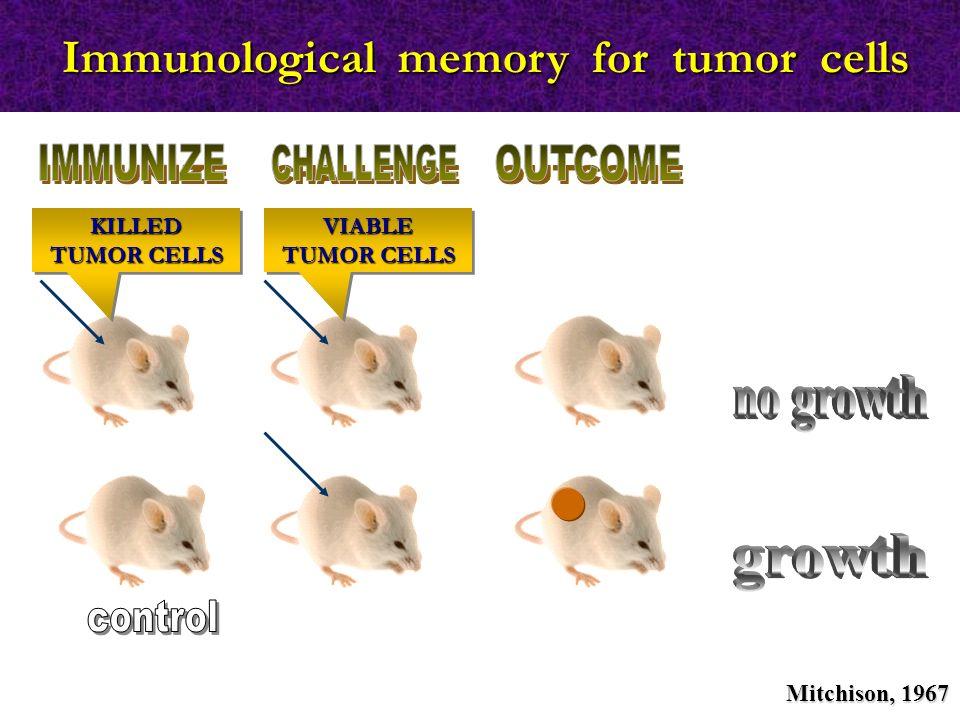 KILLED TUMOR CELLS VIABLE TUMOR CELLS Immunological memory for tumor cells Mitchison, 1967