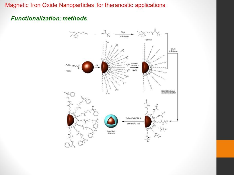 Functionalization: methods Magnetic Iron Oxide Nanoparticles for theranostic applications