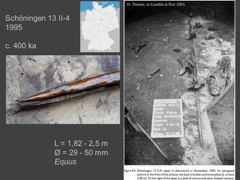 L = 1,82 - 2,5 m Ø = 29 - 50 mm Equus Schöningen 13 II-4 1995 c. 400 ka