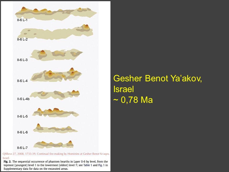 Gesher Benot Ya'akov, Israel ~ 0,78 Ma