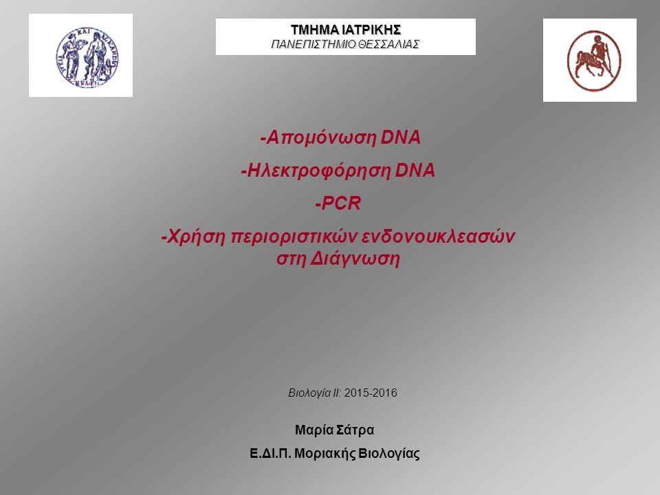 Για να πιστοποιήσουμε ότι απομονώσαμε DNA ακολούθησε ηλεκτροφόρηση σε πηκτή αγαρόζης……