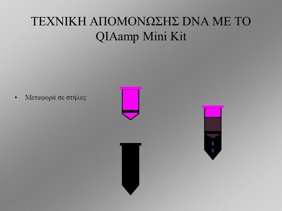 ΤΕΧΝΙΚΗ ΑΠΟΜΟΝΩΣΗΣ DNA ΜΕ ΤΟ QIAamp Mini Kit 4: αφυδάτωση DNA 4.