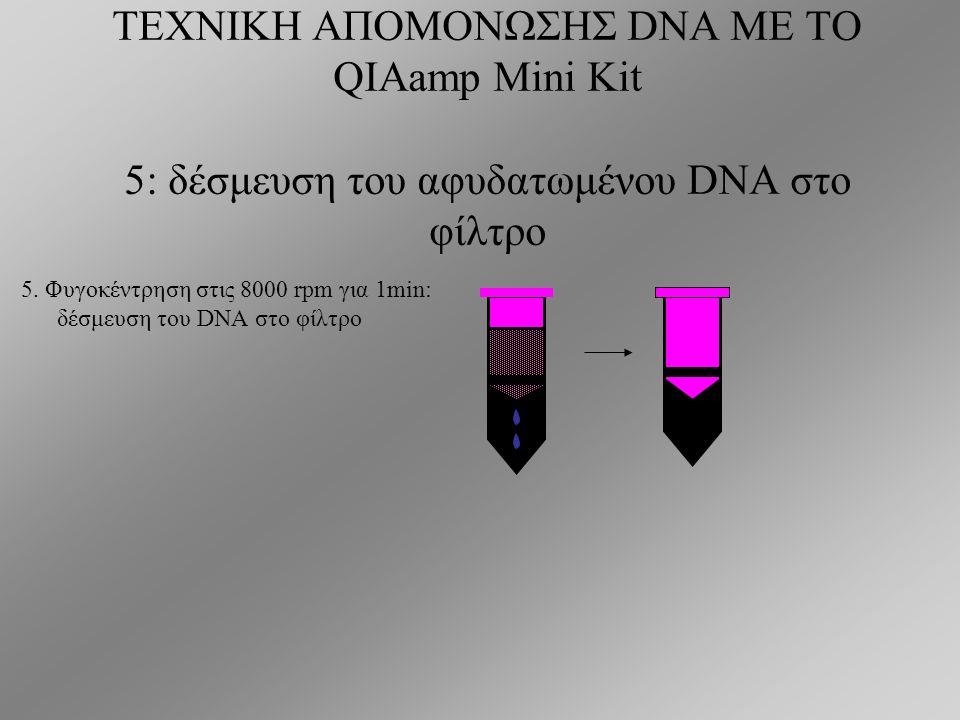 ΤΕΧΝΙΚΗ ΑΠΟΜΟΝΩΣΗΣ DNA ΜΕ ΤΟ QIAamp Mini Kit Μεταφορά σε στήλες