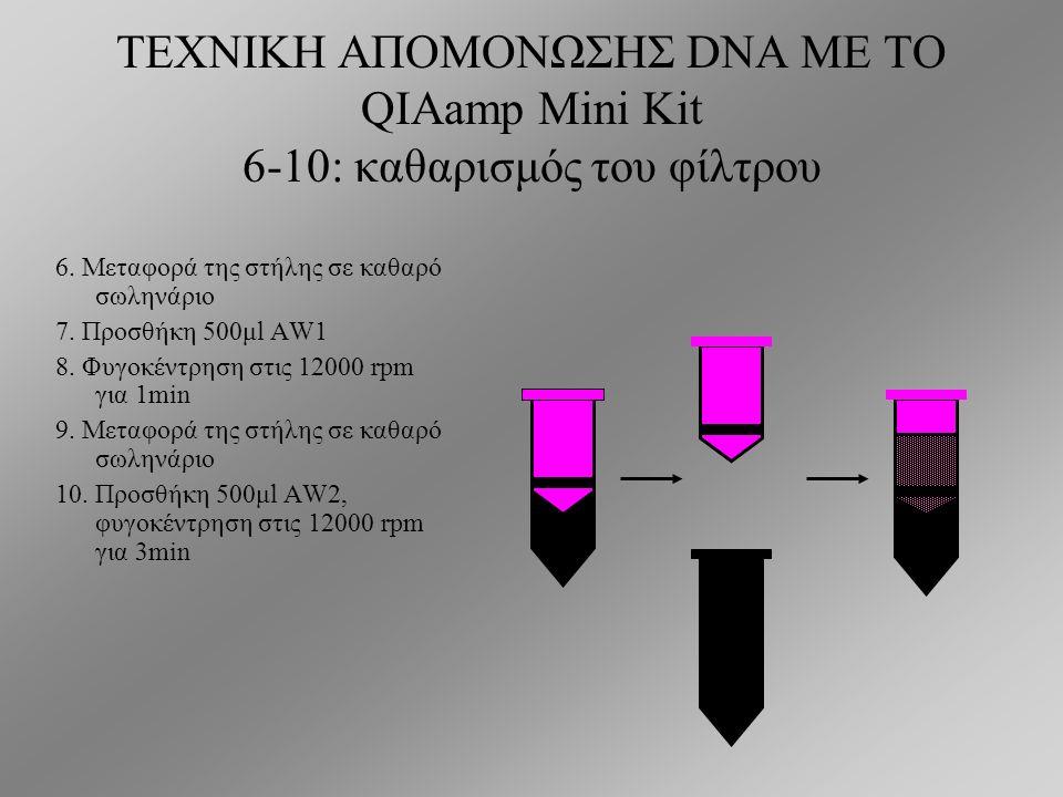 ΤΕΧΝΙΚΗ ΑΠΟΜΟΝΩΣΗΣ DNA ΜΕ ΤΟ QIAamp Mini Kit 5: δέσμευση του αφυδατωμένου DNA στο φίλτρο 5.