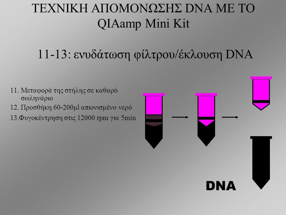 ΤΕΧΝΙΚΗ ΑΠΟΜΟΝΩΣΗΣ DNA ΜΕ ΤΟ QIAamp Mini Kit 6-10: καθαρισμός του φίλτρου 6.
