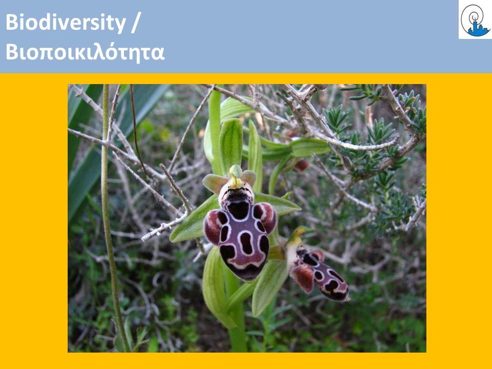 Biodiversity / Βιοποικιλότητα
