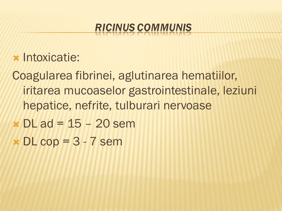  Intoxicatie: Coagularea fibrinei, aglutinarea hematiilor, iritarea mucoaselor gastrointestinale, leziuni hepatice, nefrite, tulburari nervoase  DL ad = 15 – 20 sem  DL cop = 3 - 7 sem