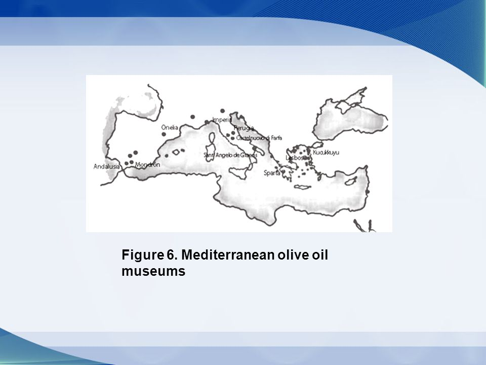 Figure 6. Mediterranean olive oil museums
