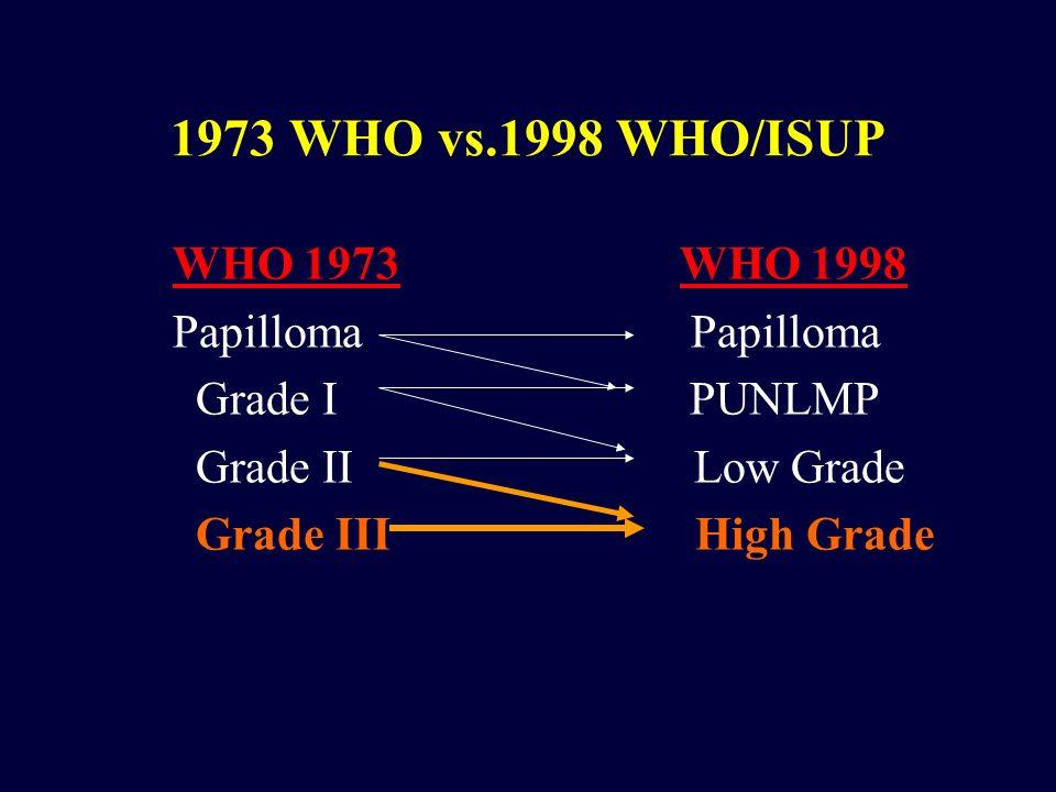 1973 WHO vs.1998 WHO/ISUP WHO 1973 WHO 1998 Papilloma Papilloma Grade I PUNLMP Grade II Low Grade Grade III High Grade