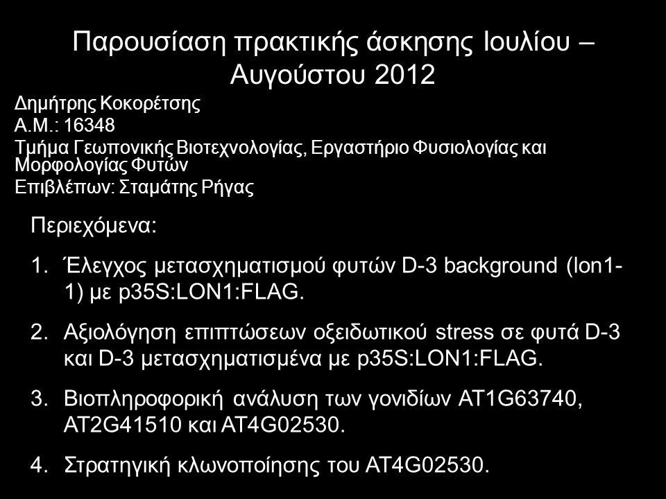 Παρουσίαση πρακτικής άσκησης Ιουλίου – Αυγούστου 2012 Δημήτρης Κοκορέτσης Α.Μ.: 16348 Τμήμα Γεωπονικής Βιοτεχνολογίας, Εργαστήριο Φυσιολογίας και Μορφ