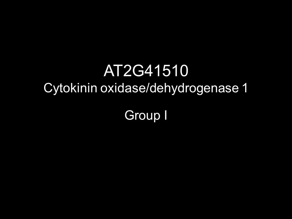 AT2G41510 Cytokinin oxidase/dehydrogenase 1 Group I