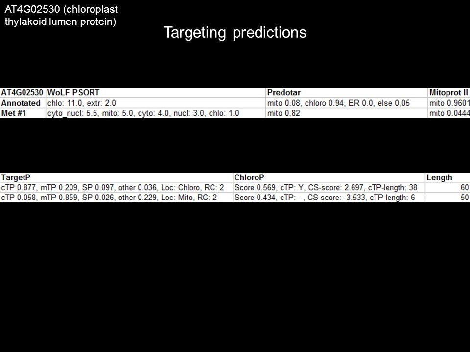 Targeting predictions AT4G02530 (chloroplast thylakoid lumen protein)