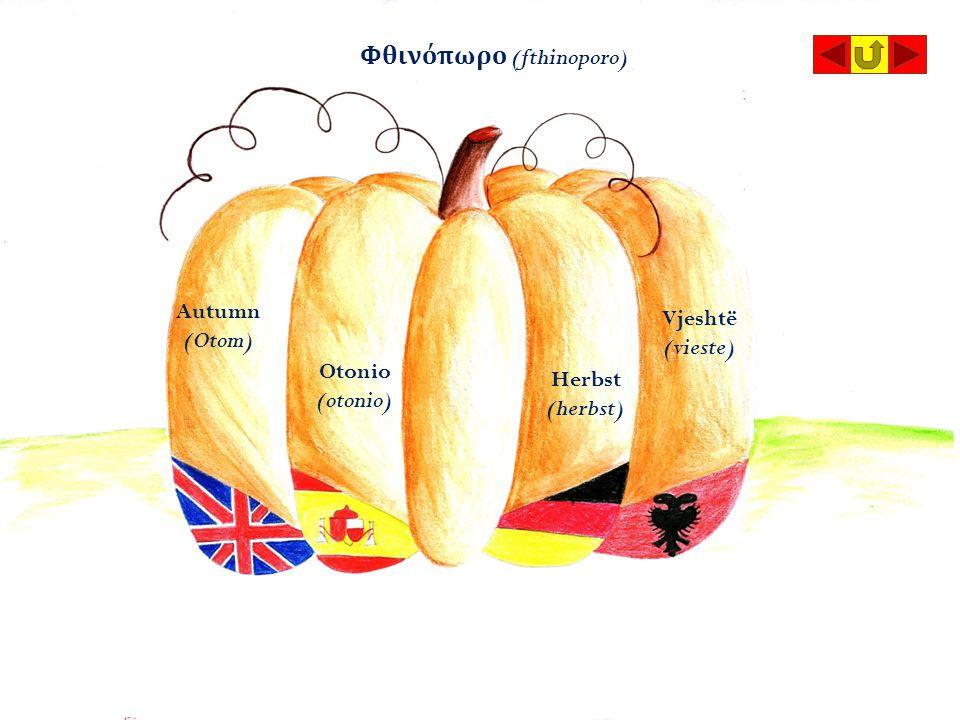 Otonio (otonio) Autumn (Otom) Vjeshtë (vieste) Herbst (herbst) Φθινόπωρο (fthinoporo)