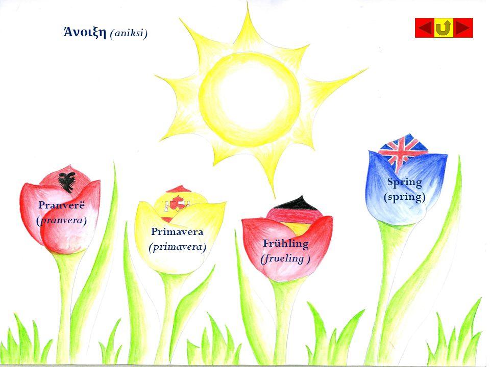 Άνοιξη (aniksi) Pranverë (pranvera) Primavera (primavera) Frühling (frueling ) Spring (spring)