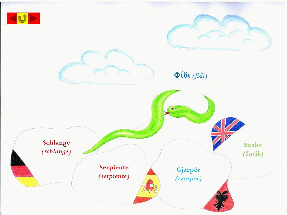Serpiente (serpiente) Φίδι (fidi) Snake (Sneik) Schlange (schlange) Gjarpër (tzarper)