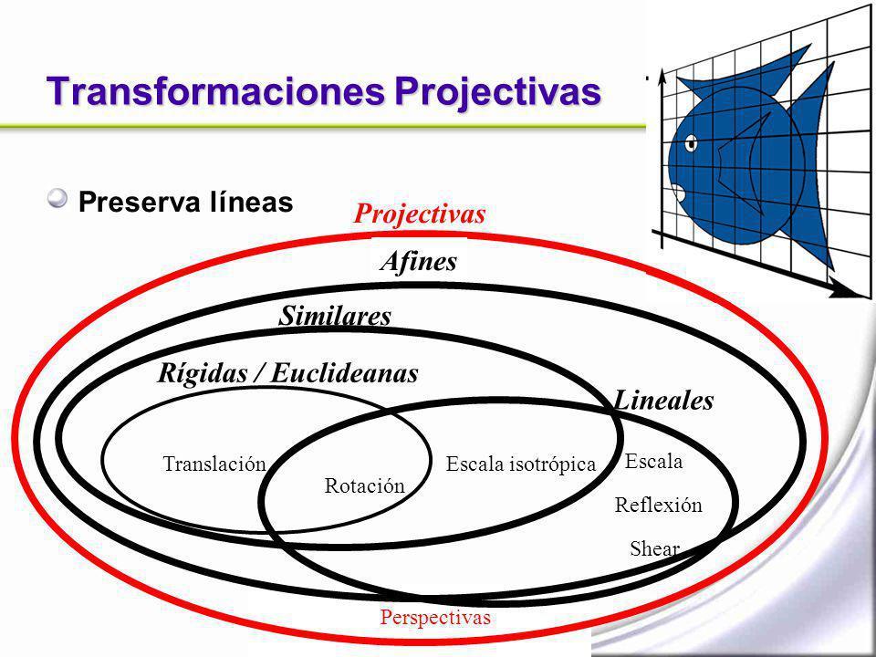 Transformaciones Projectivas Preserva líneas Projectivas Perspectivas Afines Escala Shear Reflexión Translación Rotación Similares Escala isotrópica L