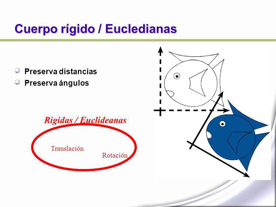 Cuerpo rígido / Eucledianas Preserva distancias Preserva ángulos Translación Rotación Rigidas / Euclideanas
