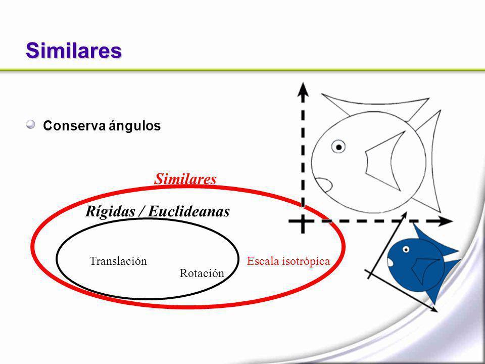 Similares Conserva ángulos Translación Rotación Similares Escala isotrópica Rígidas / Euclideanas