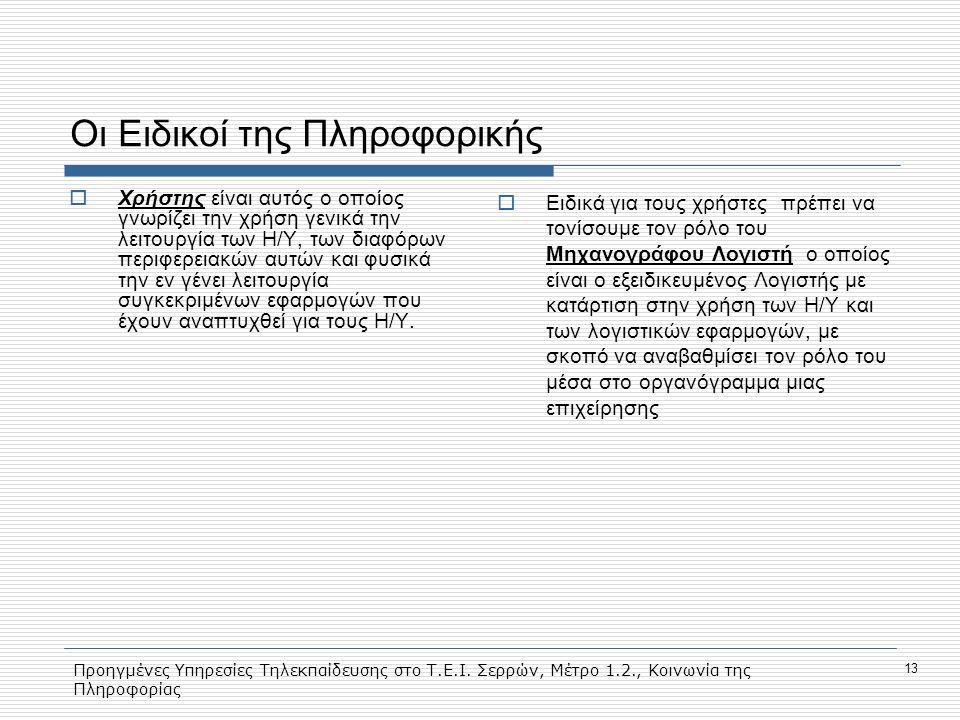 Προηγμένες Υπηρεσίες Τηλεκπαίδευσης στο Τ.Ε.Ι. Σερρών, Μέτρο 1.2., Κοινωνία της Πληροφορίας 13 Οι Ειδικοί της Πληροφορικής  Χρήστης είναι αυτός ο οπο