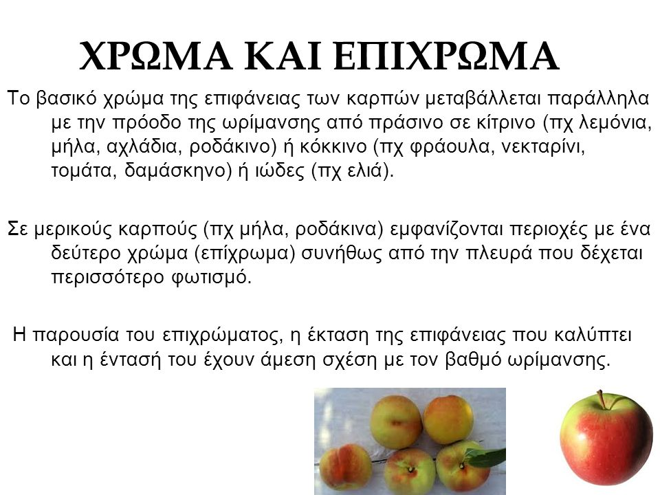 ΧΡΩΜΑ ΚΑΙ ΕΠΙΧΡΩΜΑ Το βασικό χρώμα της επιφάνειας των καρπών μεταβάλλεται παράλληλα με την πρόοδο της ωρίμανσης από πράσινο σε κίτρινο (πχ λεμόνια, μή