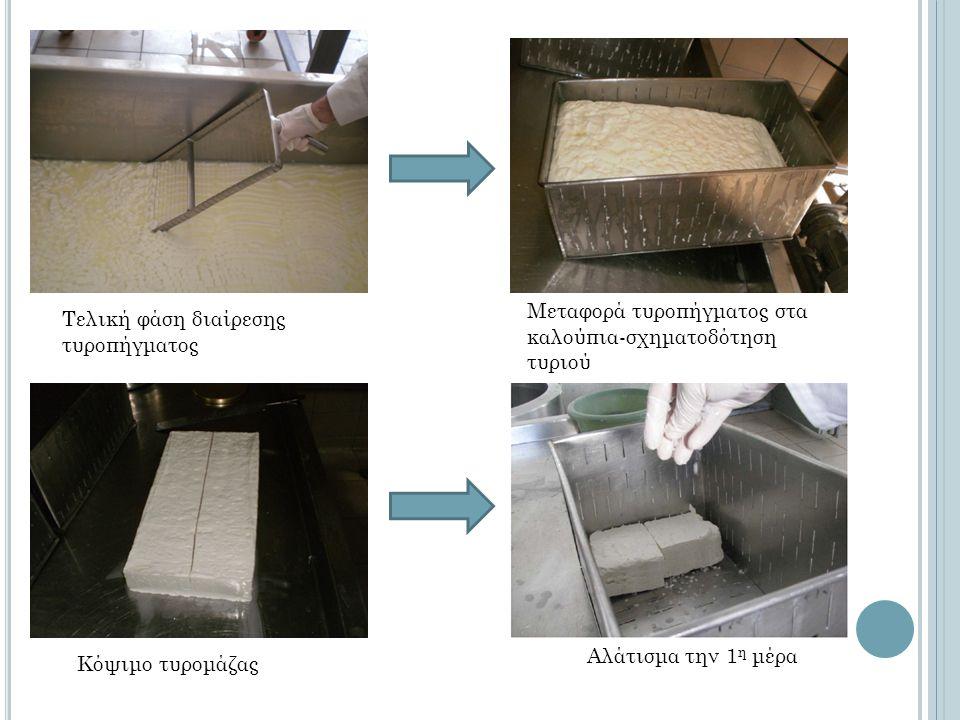 Τελική φάση διαίρεσης τυροπήγματος Μεταφορά τυροπήγματος στα καλούπια-σχηματοδότηση τυριού Κόψιμο τυρομάζας Αλάτισμα την 1 η μέρα