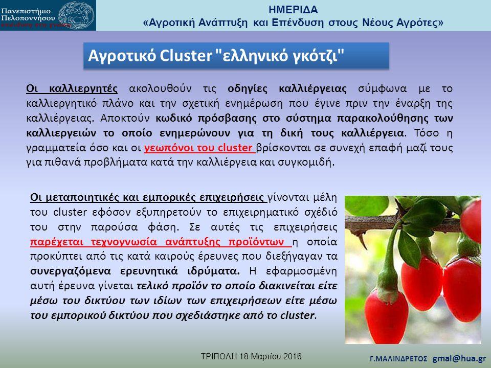 ΗΜΕΡΙΔΑ «Αγροτική Ανάπτυξη και Επένδυση στους Νέους Αγρότες» TΡΙΠΟΛΗ 18 Μαρτίου 2016 Γ.ΜΑΛΙΝΔΡΕΤΟΣ gmal@hua.gr Οι μεταποιητικές και εμπορικές επιχειρήσεις γίνονται μέλη του cluster εφόσον εξυπηρετούν το επιχειρηματικό σχέδιό του στην παρούσα φάση.