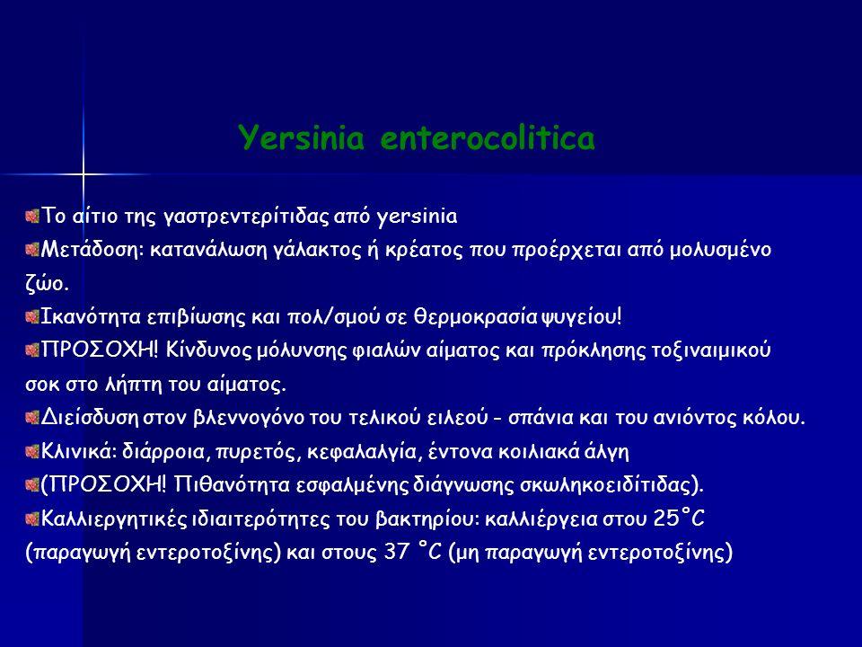 Yersinia enterocolitica Το αίτιο της γαστρεντερίτιδας από yersinia Μετάδοση: κατανάλωση γάλακτος ή κρέατος που προέρχεται από μολυσμένο ζώο.
