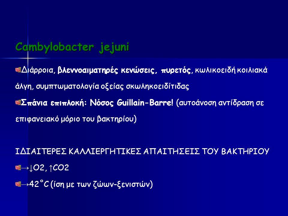 Cambylobacter jejuni Διάρροια, βλεννοαιματηρές κενώσεις, πυρετός, κωλικοειδή κοιλιακά άλγη, συμπτωματολογία οξείας σκωληκοειδίτιδας Σπάνια επιπλοκή: Νόσος Guillain-Barre.