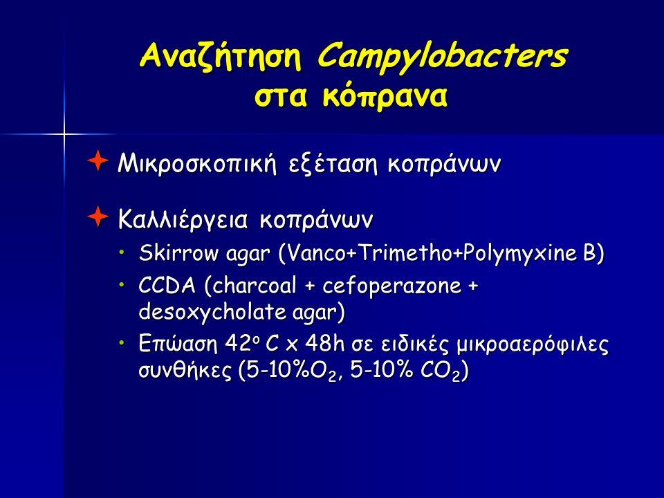 Αναζήτηση Campylobacters στα κόπρανα  Μικροσκοπική εξέταση κοπράνων  Καλλιέργεια κοπράνων Skirrow agar (Vanco+Trimetho+Polymyxine B)Skirrow agar (Vanco+Trimetho+Polymyxine B) CCDA (charcoal + cefoperazone + desoxycholate agar)CCDA (charcoal + cefoperazone + desoxycholate agar) Επώαση 42 ο C x 48h σε ειδικές μικροαερόφιλες συνθήκες (5-10%Ο 2, 5-10% CO 2 )Επώαση 42 ο C x 48h σε ειδικές μικροαερόφιλες συνθήκες (5-10%Ο 2, 5-10% CO 2 )