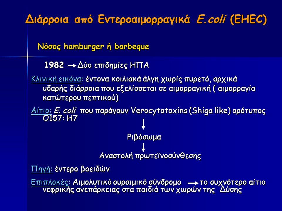 Διάρροια από Εντεροαιμορραγικά E.coli (EHEC) Διάρροια από Εντεροαιμορραγικά E.coli (EHEC) Νόσος hamburger ή barbeque Νόσος hamburger ή barbeque 1982 Δύο επιδημίες ΗΠΑ 1982 Δύο επιδημίες ΗΠΑ Κλινική εικόνα: έντονα κοιλιακά άλγη χωρίς πυρετό, αρχικά Κλινική εικόνα: έντονα κοιλιακά άλγη χωρίς πυρετό, αρχικά υδαρής διάρροια που εξελίσσεται σε αιμορραγική ( αιμορραγία υδαρής διάρροια που εξελίσσεται σε αιμορραγική ( αιμορραγία κατώτερου πεπτικού) κατώτερου πεπτικού) Αίτιο: E.