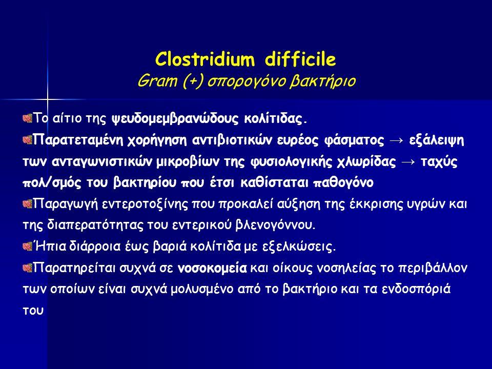Clostridium difficile Gram (+) σπορογόνο βακτήριο Το αίτιο της ψευδομεμβρανώδους κολίτιδας.