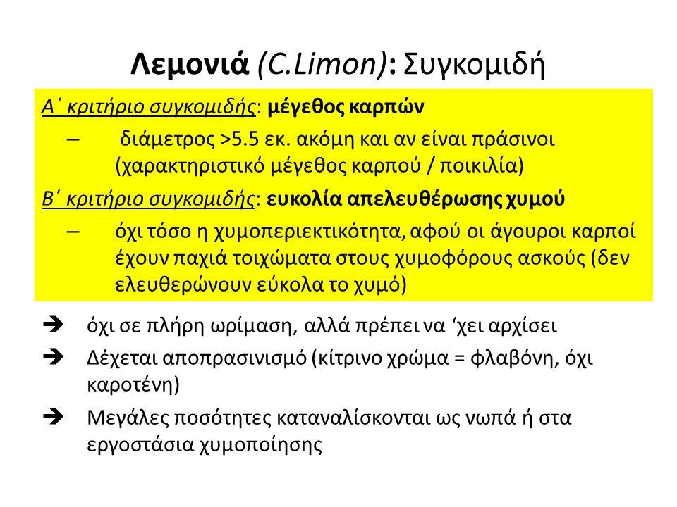 Λεμονιά (C.Limon) Χαρακτηριστικά καλού λεμονιού: Λεπτόφλουδο Λίγοι σπόροι Λεία επιφάνεια φλοιού Μεγάλη περιεκτικότητα σε χυμούς Μεταχείριση μετά τη συγκομιδή: Πλύσιμο, επικάλυψη με κηρό, Ταξινόμηση, σύμφωνα με το χρώμα (= στάδιο ωρίμασης) και μέγεθος Οι καρποί Αν πλησιάζουν σε ωριμότητα, οδηγούνται στην αγορά οι πιο άγουροι (περισσότεροι) για συντήρηση (παραμονή σε ψυγεία), αφού μπουν σε κιβώτια (μετά την ταξινόμηση τους)