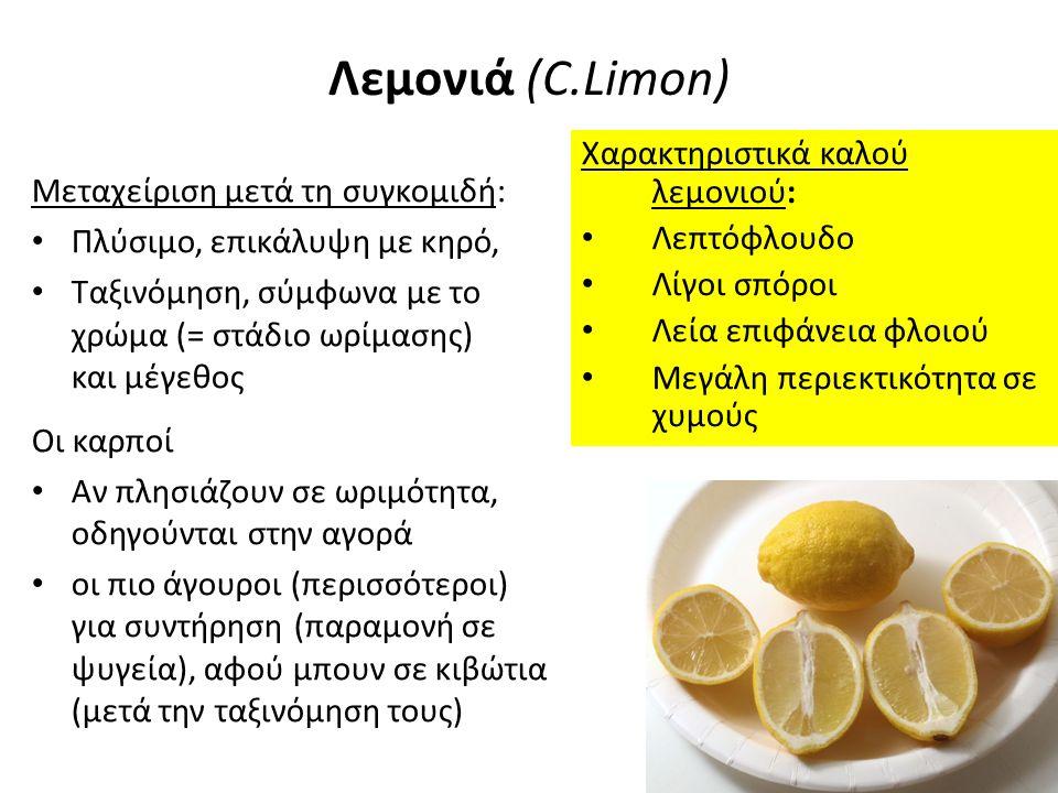 Λεμονιά (C.Limon): Συντήρηση ΔΥΟ ΦΑΣΕΙΣ Α) Στο συσκευαστήριο: παραμονή σε συνθήκες δωματίου για λίγες ημέρες, για απώλεια υγρασίας (= πιο ανθεκτικοί μετασυλλεκτικά) Β) Στα ψυγεία: κατάλληλη ρύθμιση συνθηκών συντήρησης για μικρότερη μεγαλύτερη ή διάρκεια συντήρησης (=κλιμακωτή προσφορά λεμονιών) Διάρκεια συντήρησης ανάλογα με: Στάδιο ωρίμασης : ώριμα (κίτρινα) λεμόνια συντηρούνται για μερικές εβδομάδες, άγουρα > 6 μήνες Θ° συντήρησης: περισσότερο στους 8 - 14 ο C Χρήση μυκητοκτόνων, ορμονών αντιγήρανσης ή αύξησης από το δέντρο, πολυαιθυλενίου κ.α.