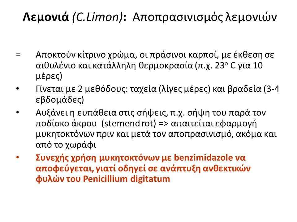Λεμονιά (C.Limon): Μεταποίηση Προϊόντα μεταποίησης: συμπυκνωμένος χυμός ηδύποτα (λιμοντσέλο) αιθέρια έλαια (ως πρόσθετα γεύσης/ αρώματος, σε αναψυκτικά, γλυκίσματα, ακόμα και σε καθαριστικά)...