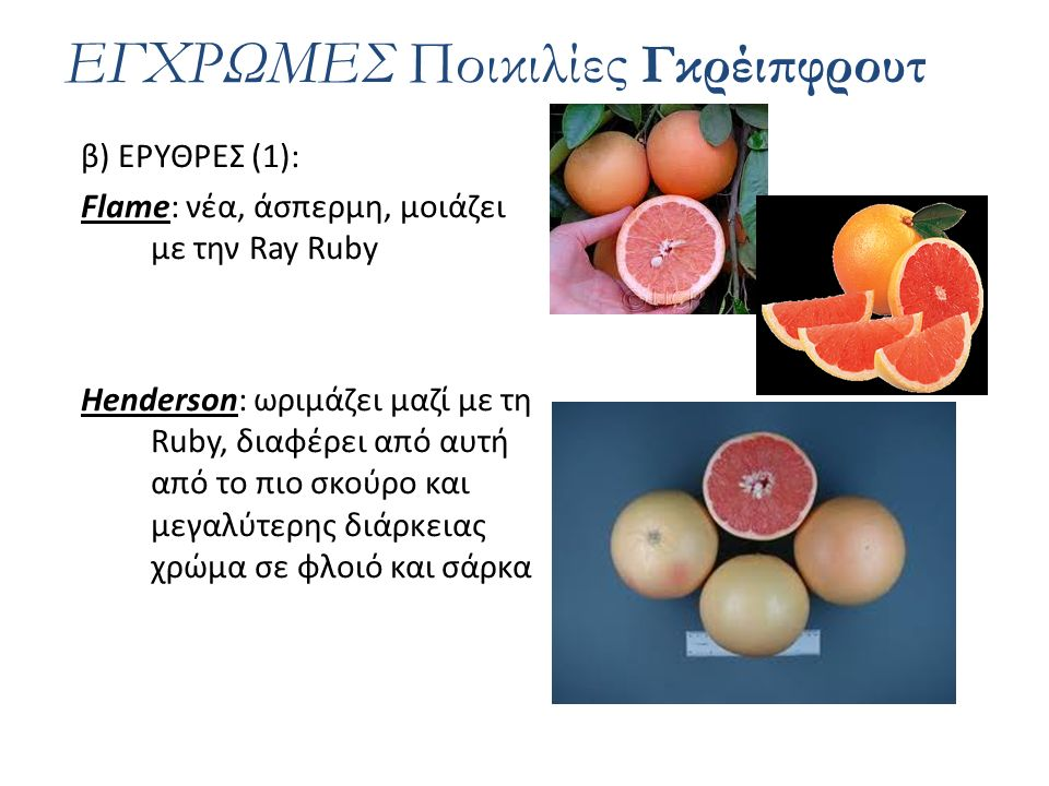 β) ΕΡΥΘΡΕΣ (2): Ray Ruby: δύσκολα ξεχωρίζει σαν δέντρο από τη Ruby.