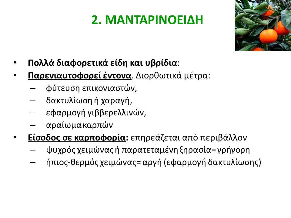 Κλιματικές απαιτήσεις Μανταρινοειδών Δέντρο : πιο ανθεκτικό σε Χ.