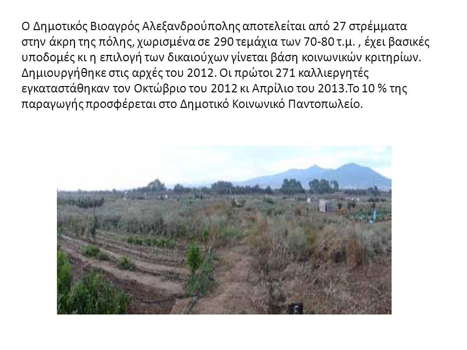 Ο Δημοτικός Βιοαγρός Αλεξανδρούπολης αποτελείται από 27 στρέμματα στην άκρη της πόλης, χωρισμένα σε 290 τεμάχια των 70-80 τ.μ., έχει βασικές υποδομές