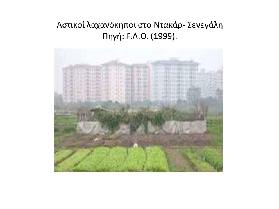 ΦΟΡΕΙΣ - ΘΕΜΙΚΑ ΟΡΓΑΝΑ Η σημασία της αστικής γεωργίας αναγνωρίζεται όλο και περισσότερο από διεθνείς οργανισμούς όπως: UNCED(Agenda 21) UNCHS ( Habitat ) FAO ( Παγκόσμιος Οργανισμός Τροφίμων και Γεωργίας ) CGIAR(Διεθνη γεωργικα Ερευνητικα Κεντρα) Επιπλέον, το κίνημα των αστικών καλλιεργειών δρα καταλυτικά για συναιτερισμούς μεταξύ ακαδημαΪκών, δημοτικών οργανισμών, κοινοτικών φορέων, μη κερδοσκοπικών προσώπων κι αγροτών.