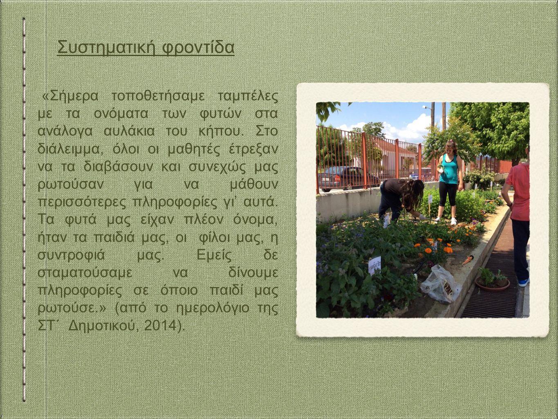 «Σήμερα τοποθετήσαμε ταμπέλες με τα ονόματα των φυτών στα ανάλογα αυλάκια του κήπου.