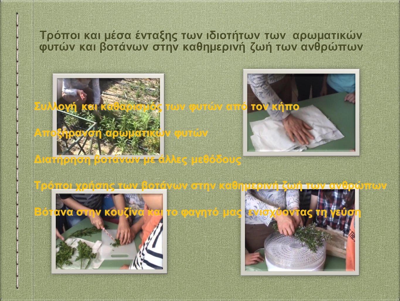 Τρόποι και μέσα ένταξης των ιδιοτήτων των αρωματικών φυτών και βοτάνων στην καθημερινή ζωή των ανθρώπων Συλλογή και καθαρισμός των φυτών από τον κήπο Αποξήρανση αρωματικών φυτών Διατήρηση βοτάνων με άλλες μεθόδους Τρόποι χρήσης των βοτάνων στην καθημερινή ζωή των ανθρώπων Βότανα στην κουζίνα και το φαγητό μας ενισχύοντας τη γεύση Συλλογή και καθαρισμός των φυτών από τον κήπο Αποξήρανση αρωματικών φυτών Διατήρηση βοτάνων με άλλες μεθόδους Τρόποι χρήσης των βοτάνων στην καθημερινή ζωή των ανθρώπων Βότανα στην κουζίνα και το φαγητό μας ενισχύοντας τη γεύση