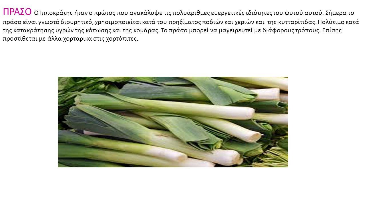 ΠΡΑΣΟ Ο Ιπποκράτης ήταν ο πρώτος που ανακάλυψε τις πολυάριθμες ευεργετικές ιδιότητες του φυτού αυτού. Σήμερα το πράσο είναι γνωστό διουρητικό, χρησιμο