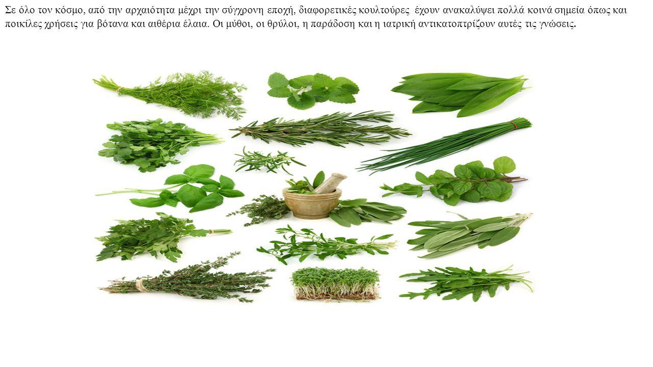 Σε όλο τον κόσμο, από την αρχαιότητα μέχρι την σύγχρονη εποχή, διαφορετικές κουλτούρες έχουν ανακαλύψει πολλά κοινά σημεία όπως και ποικίλες χρήσεις για βότανα και αιθέρια έλαια.